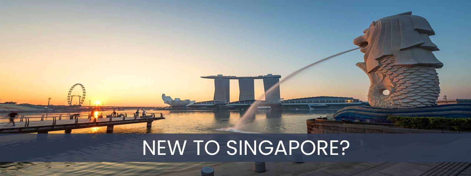 New-To-Singapore