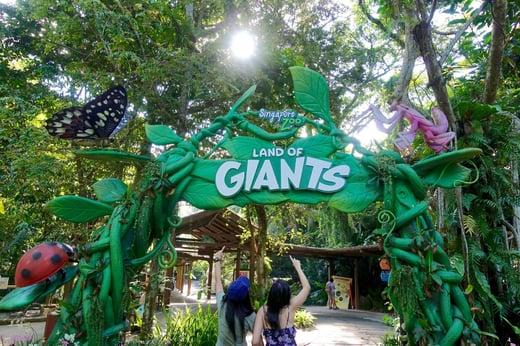 Singapore_zoo_1